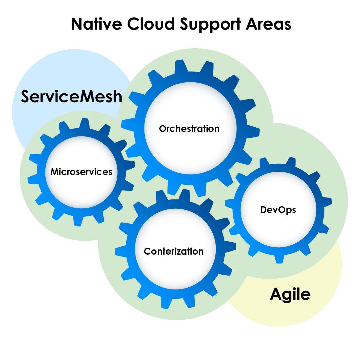 Native Cloud Support Areas: Contenerization, Microservices, Orchestration, DevOps + ServiceMesh, Agile